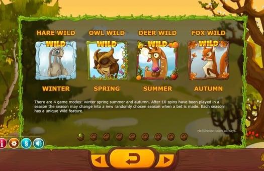 Описание диких знаков игрового аппарата Seasons