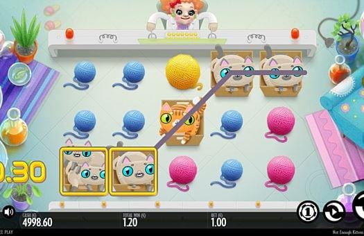 Призовая комбинация на линии в игровой автомат Not Enough Kittens