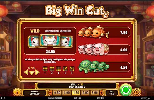 Таблица выплат в онлайн аппарате Big Win Cat